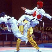 Taekwondotech4