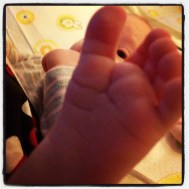 Lilly foot