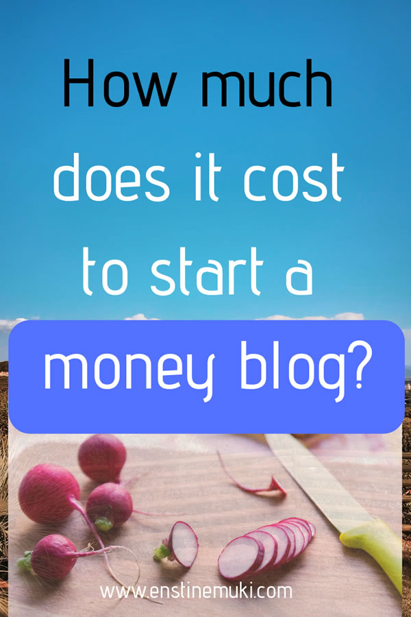 How much does it cost to start a money making blog