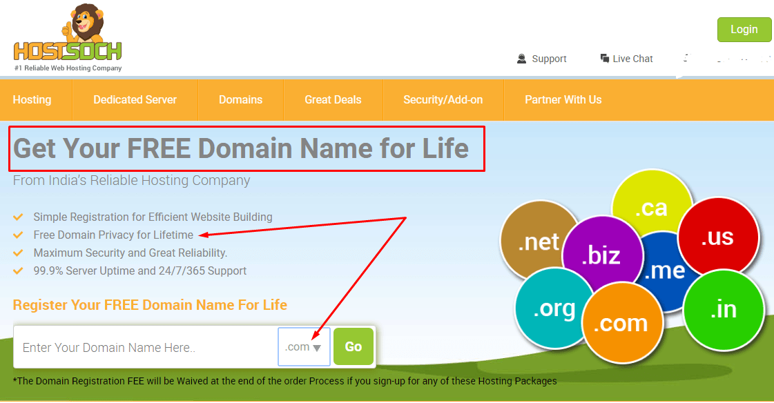 hostsoch free domain for life for indians