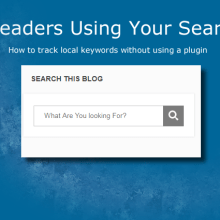 Are Readers Using Your Search Box
