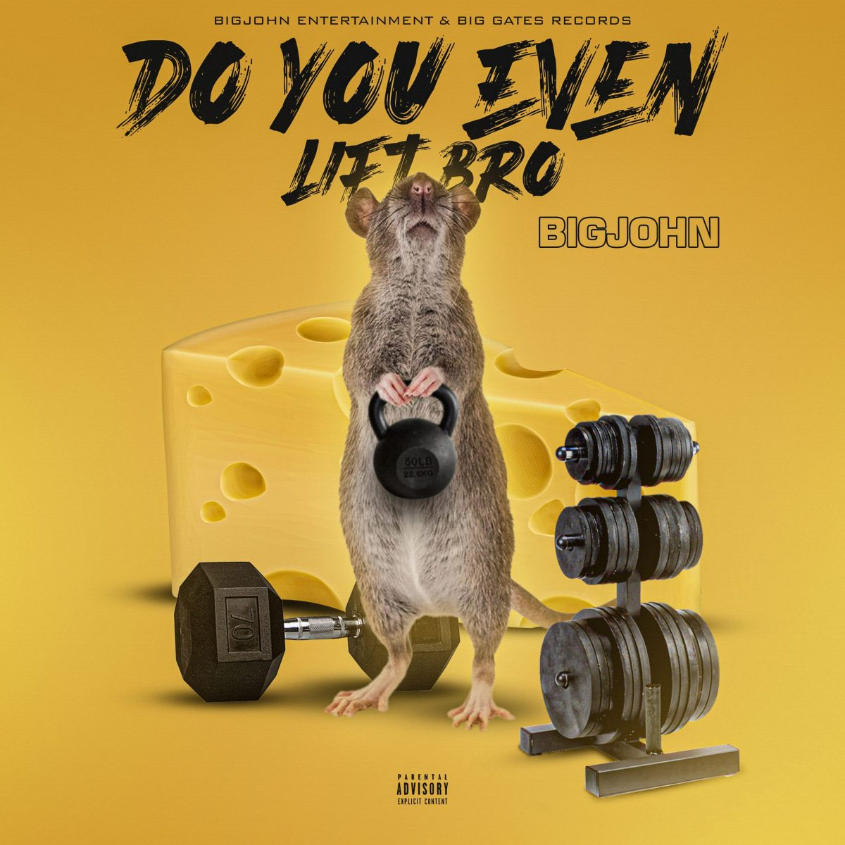 BigJohn – Do You Even Lift Bro ( Official Audio )