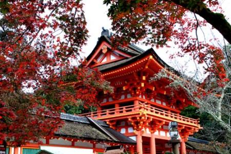 上賀茂神社の紅葉の2017年の見頃の時期は?混雑情報や見どころも
