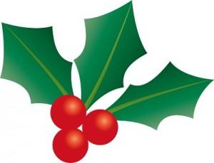 クリスマスの葉っぱや赤い実の植物の名前は柊?意味や由来は?