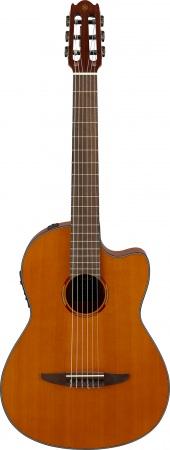 好評のヤマハギター各シリーズにラインアップを拡充する新製品が登場