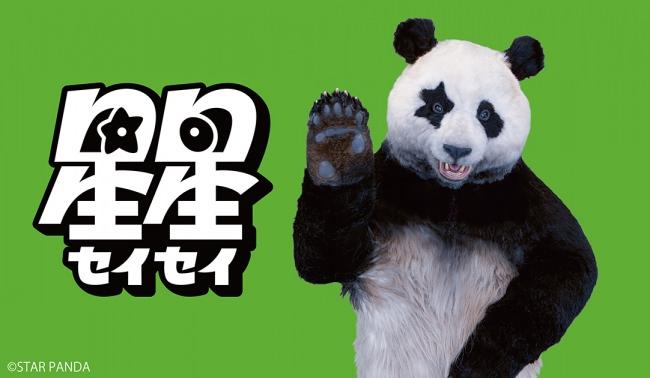 朝の情報番組ZIP!〔日テレ〕レギュラー出演中 パンダの星星(セイセイ)。各種メディア、キャラクター商品のマルチ展開を目的とし、STAR PANDA LLP を 設立。