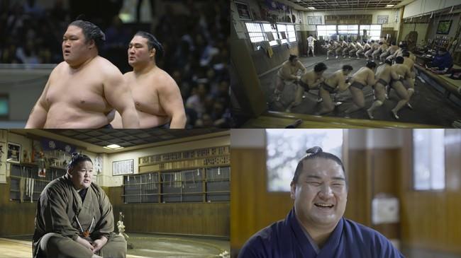 (C) 2020「相撲道~サムライを継ぐ者たち~」製作委員会