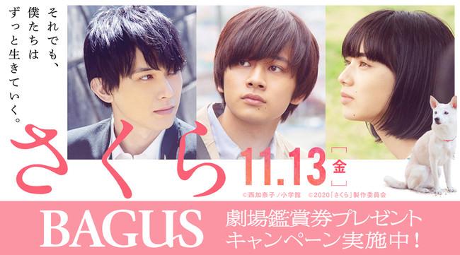 【BAGUS】北村匠海、小松菜奈、吉沢亮が兄弟妹役で共演。11/13(金)公開『さくら』公開記念プレゼントキャンペーン開催!