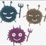 エンテロウィルス 種類