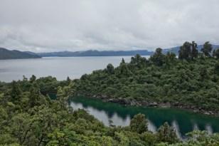 Entlang der Te Urewera Rainforest Route