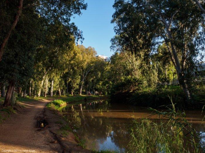 Spazierweg am Yarkon-Fluß, Tel Aviv - Naturwelt in der Stadt