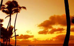 Hermoso Atardecer en Paia, Hawaii