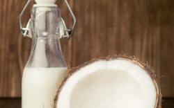 receta de leche de coco casera
