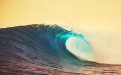 abierto de surf en los cabos 2015