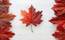 Canadá, el país con mejor reputación del mundo