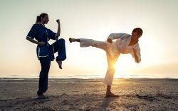 Asiste al Campeonato Internacional de Karate LPK 2015 con PRV