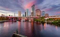 Visita Tampa Bay con tu familia y disfruta al máximo