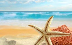 Destinos caribeños para los amantes de la historia compartidos por Eccentry Holidays