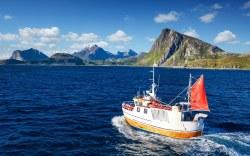 Aproveche las mejores oportunidades para pescar este verano 2016