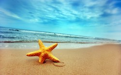 Disfrute al máximo las vacaciones de Verano 2016 en Cancún