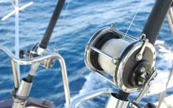 El Cid Vacations Club Destaca el Torneo de pesca Dorado Shootout que llega a Mazatlán este noviembre 2016