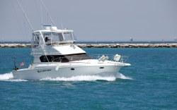 Los Cabos es el lugar ideal para la mejor pesca del mundo