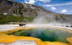 parque yellowstone ubicacion, parque yellowstone volcan, yellowstone wikipedia, yellowstone park