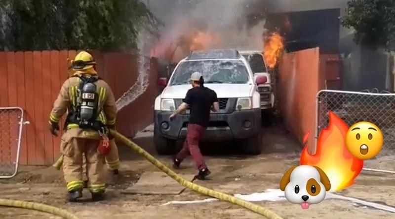 Video - Un hombre entra a su casa en llamas para salvar a su Pitbull 😲🐶🔥