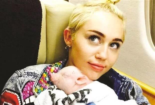 Muere la cerda de Miley Cyrus, una de sus muchas mascotas