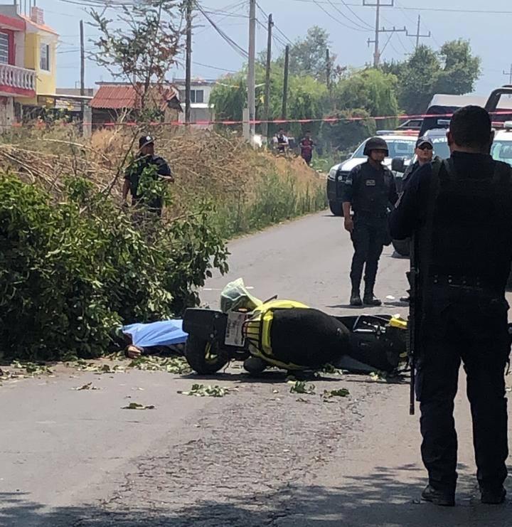 MUERE MUJER TRAS CAERLE UNA RAMA DE ÁRBOL EN SAN SALVADOR EL VERDE