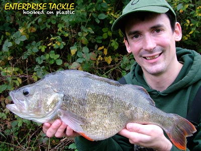 alan stagg october perch