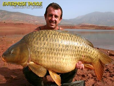 frank warwick common