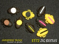 Zig-Beetle-variations