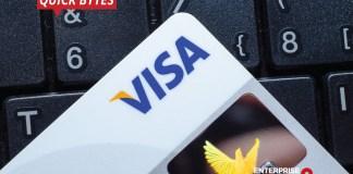 Visa, AI, Fraud