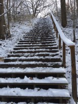 Wintery staircase