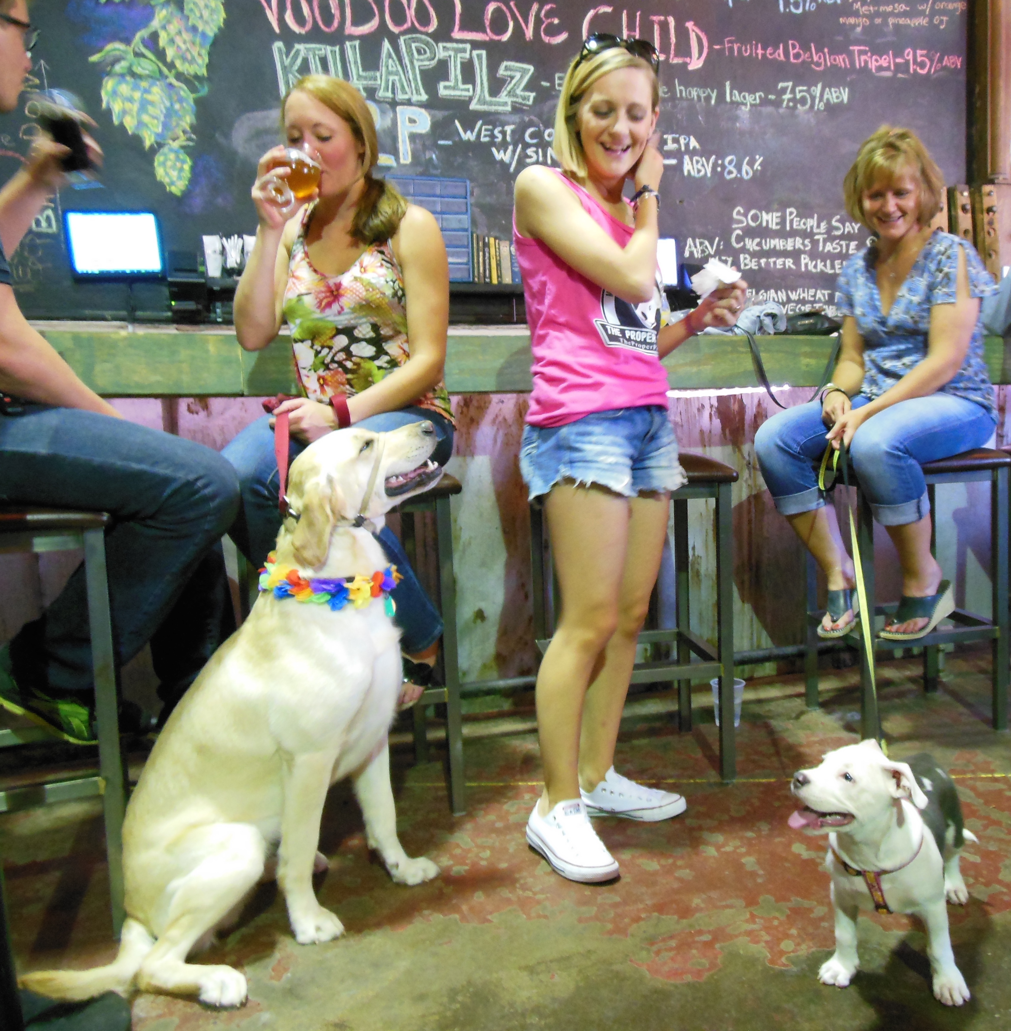 Patrons at Voodoo Homestead enjoy the suds while their dogs just soak in the atmosphere.