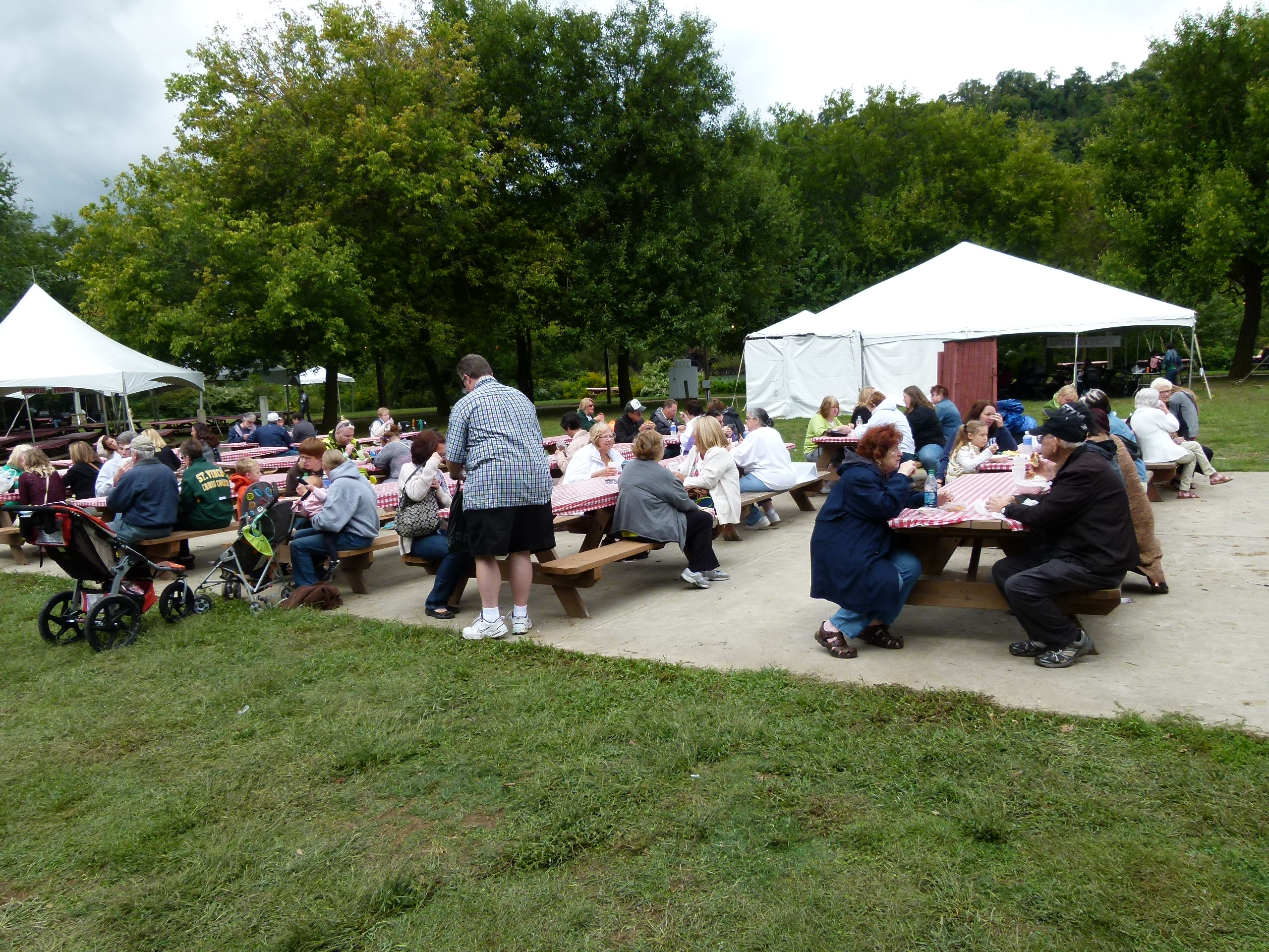 Friends and families relax and eat in the picnic area.