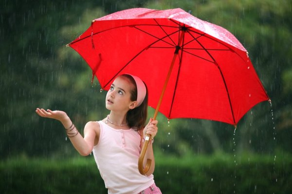 beautiful rain photo