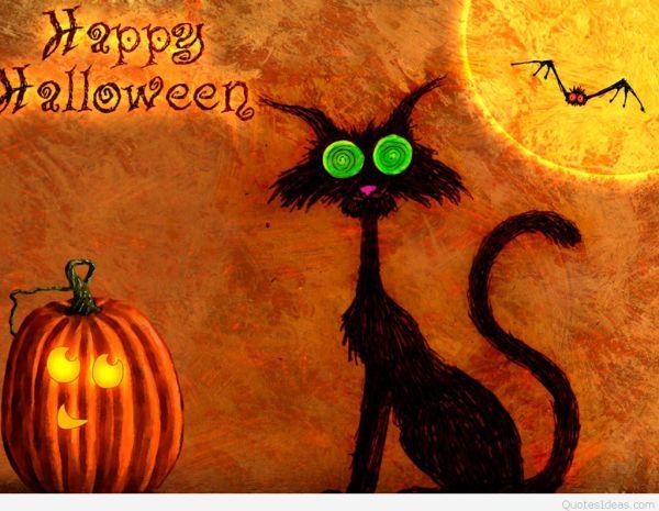 Crazy-cat-funny-Happy-Halloween-wish