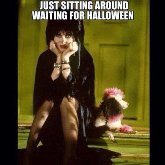 funny-memes-halloween