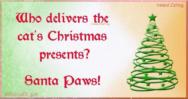 cute Christmas jokes