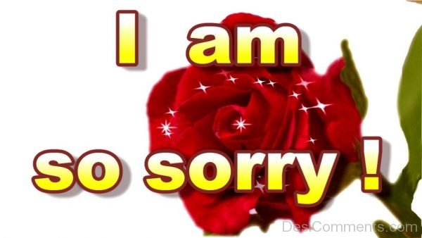 50 I Am Sorry Images To Share Your Deep Emotions Entertainmentmesh