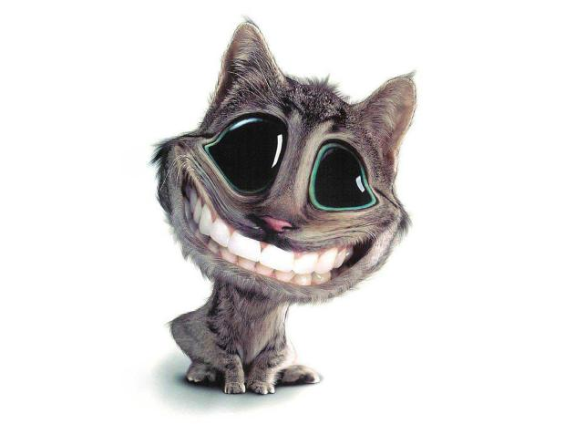 3d funny cat background image