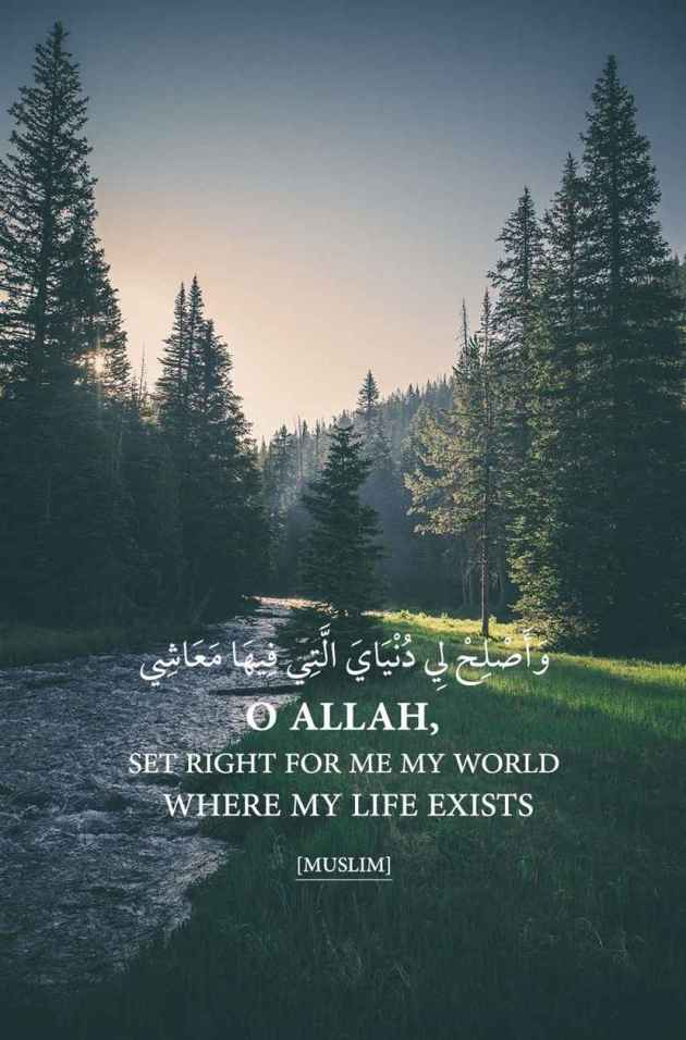 quotes about life for muslims