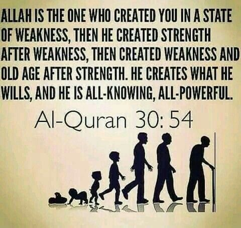 Quran sayings about life
