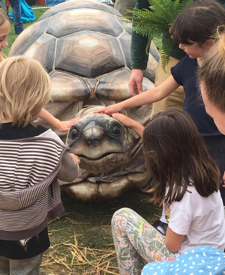What the Tortoise Taught Us  by the Flying Buttresses will feature at the 2019 Big Splash Festival in Newport.