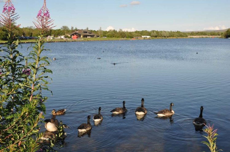 The visitor centre at Parc Bryn Bach will remain closed, but fishing access will be available for members of the angling club.