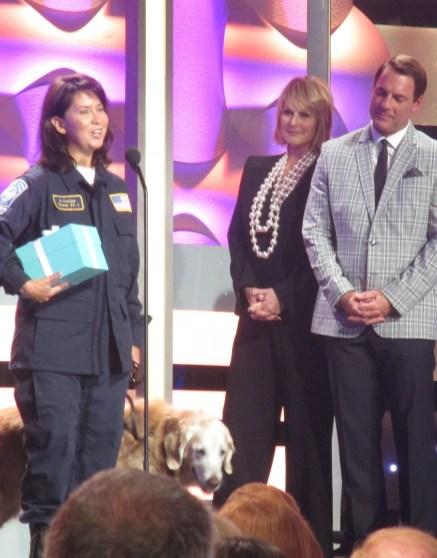 Bretagne 9-11 rescue dog (photo by Margie Barron)