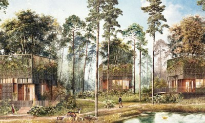 mystical tree house