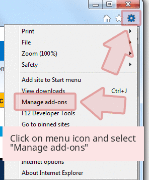 IE Extension 1